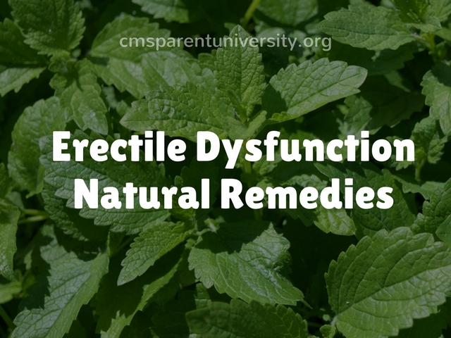 Erectile Dysfunction Natural Remedies